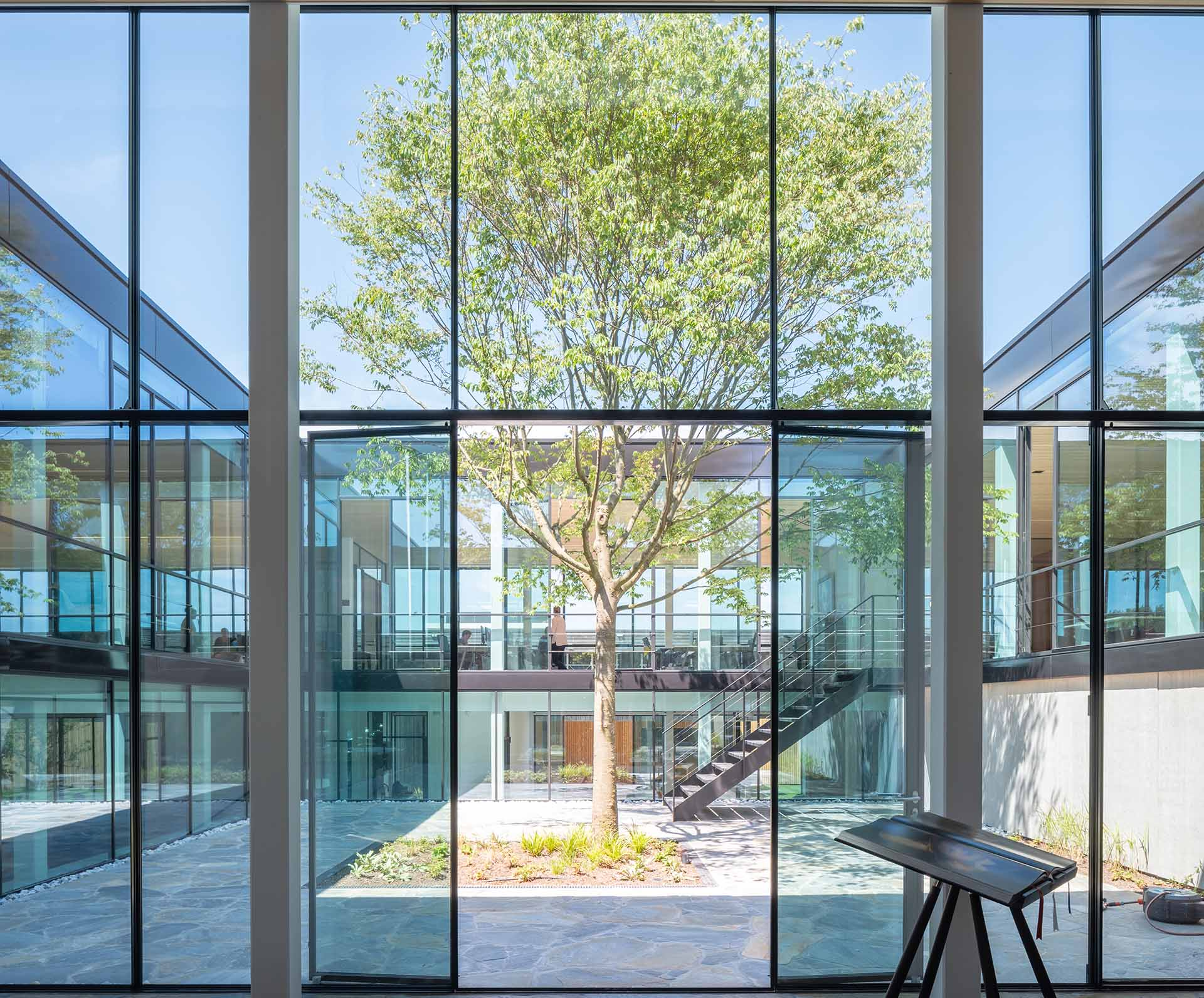 A building with glass walls